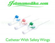 Catheter With Safety Wings